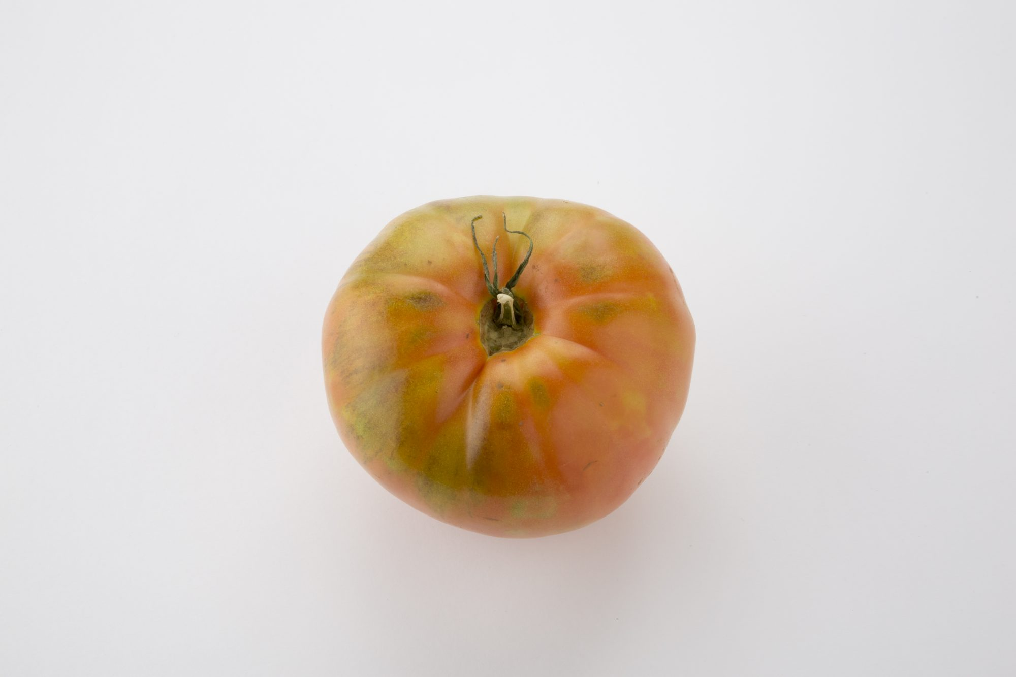 Lavoe producto Tomate